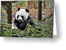 Bamboo Loving Greeting Card