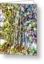 Bamboo Trees In Park Greeting Card