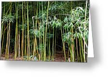 Bamboo Wind Chimes  Waimoku Falls Trail  Hana  Maui Hawaii Greeting Card