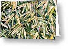 Bamboo2 Greeting Card