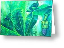 Banan Leaves 5 Greeting Card