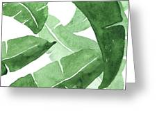 Banana Leaves  3 Greeting Card