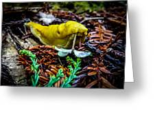 Banana Slug Greeting Card