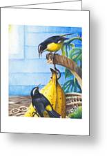 Bananaquits And Bananas Greeting Card