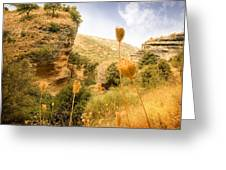 Bandit Country Near The Edge Of The Fan In Ronda Area Andalucia Spain  Greeting Card