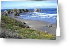 Bandon 8 Greeting Card