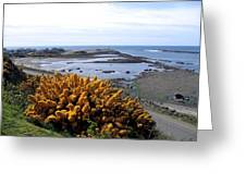 Bandon Harbor Entrance Greeting Card