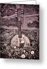Banjo Mandolin On Garden Wall Greeting Card by Bill Cannon