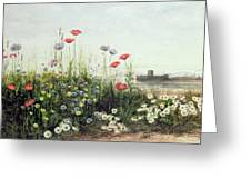 Bank Of Summer Flowers Greeting Card by Andrew Nicholl