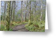 Banks Of Loch Lomond, Scotland Greeting Card