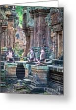 Banteay Srey Temple Pink Monkeys Greeting Card