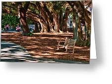 Banyans - Marie Selby Botanical Gardens Greeting Card