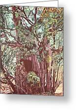 Baoba In Foliage Greeting Card