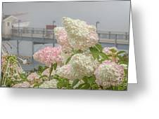 Bar Harbor Flowers In The Fog Greeting Card
