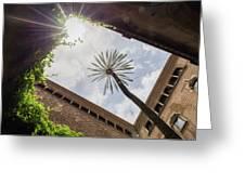 Barcelona Courtyard With Palm Tree Greeting Card