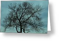 Bare Branches And Storm Clouds Greeting Card