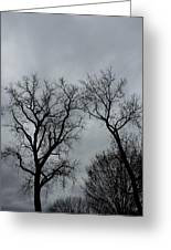 Bare, Raw, Cold Winter Day  Greeting Card