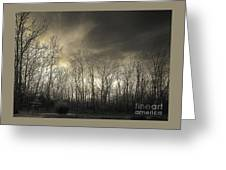 Bare Trees In A Winter Sunset Greeting Card