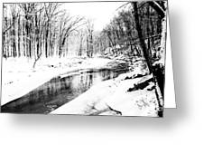 Bare Winter Branches Greeting Card