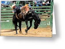 Bareback Bronc Rider Greeting Card