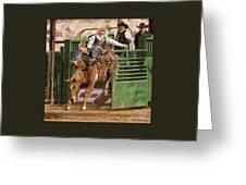 Bareback Riding At The Wickenburg Senior Pro Rodeo Greeting Card