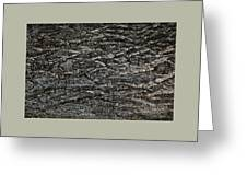 Bark Texture Greeting Card