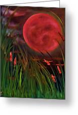 Barley Spike Moon Greeting Card