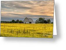 Barm In A Yellow Field Greeting Card