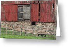 Barn And Sheep Greeting Card