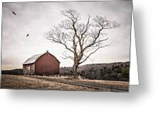 barn and tree - New York State Greeting Card