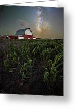 Barn Astronomy 2  Greeting Card