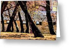 Barn Behind Trees Greeting Card