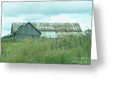 Barn In Softness Of Nature Greeting Card