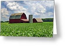 Barn In The Corn Greeting Card