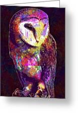 Barn Owl Bird British Nature  Greeting Card