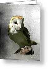 Barn Owl Greeting Card by Crispin  Delgado