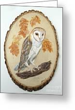 Barn Owl - Enduring Insight Greeting Card