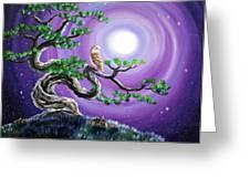 Barn Owl In Twisted Pine Tree Greeting Card