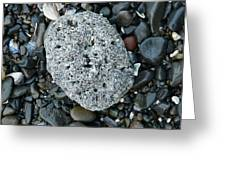 Barnacle Rock Greeting Card