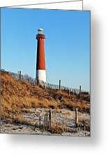 Barnegat Lighthouse Nj Greeting Card