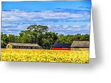 Barns In The Distance Greeting Card