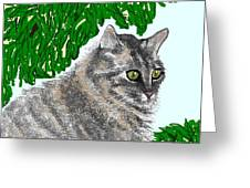 Barnstable Greeting Card