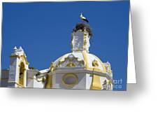 Baroque Church And Storks Nest Greeting Card