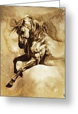 Baroque Horse Series IIi-i Greeting Card