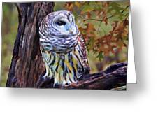 Barred Owl In The Rain Oil Painting Greeting Card