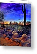 Barrel Cacti Ambling Along Greeting Card