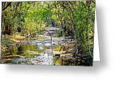 Barren Fork Creek Greeting Card