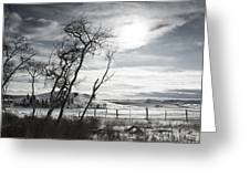 Barren Land Greeting Card