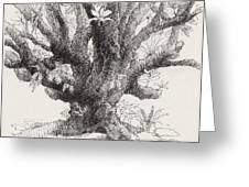 Barringtonia Tree Greeting Card