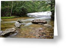 Bartlett Experimental Forest - Bartlett New Hampshire Usa Greeting Card by Erin Paul Donovan